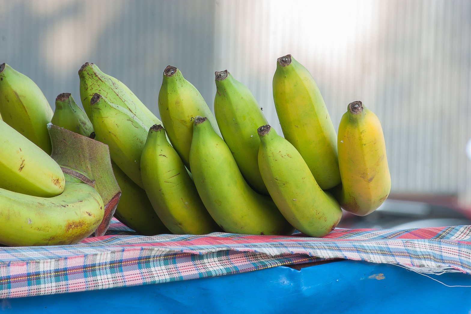 Resistant starch is good for the gut